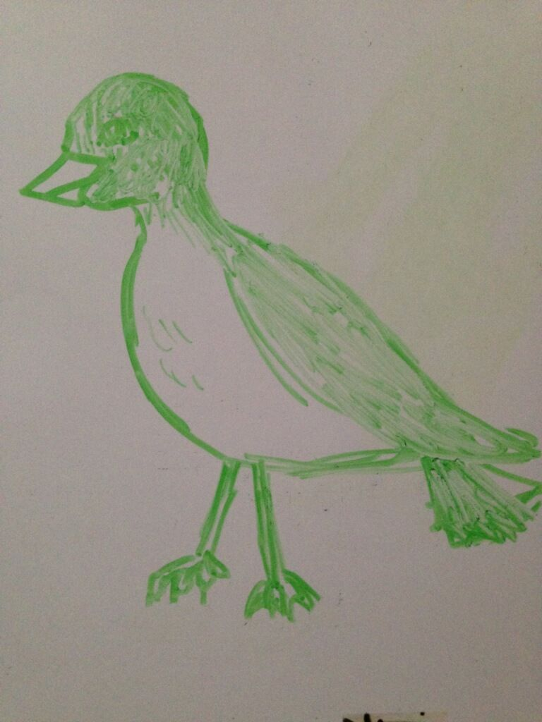 Draw A Bird Day | Uncustomary