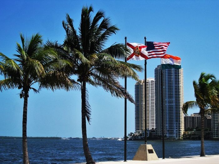 Miami Attractions & Activities To Suit Every Taste | Uncustomary